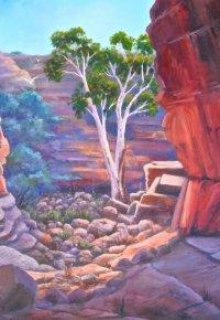 John Hayes Rockhole