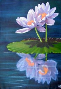 Dreamtime Waterlily
