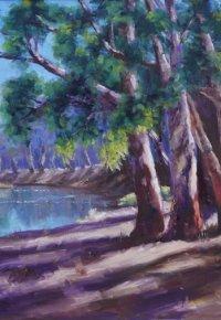 Edward-River - Deniliquin