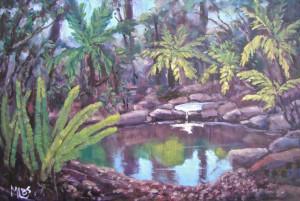 Day 15 Fern Pool - Geelong Botanic Gardens PA red size